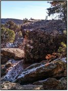 Rock Climbing Photo: Totemic Clan.