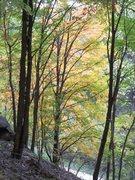 Rock Climbing Photo: Fall is my favorite time to climb along the Missou...