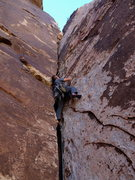 Rock Climbing Photo: John leading P2