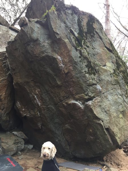Rock Climbing Photo: Looking straight at the line with House Arrest on ...
