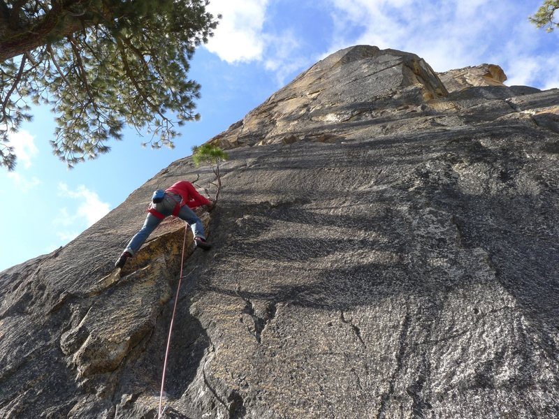 Mike Arechiga on, OB/GYN 5.10d