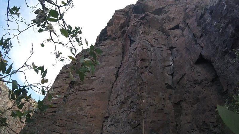 Robin on the crux of Bedeviled.