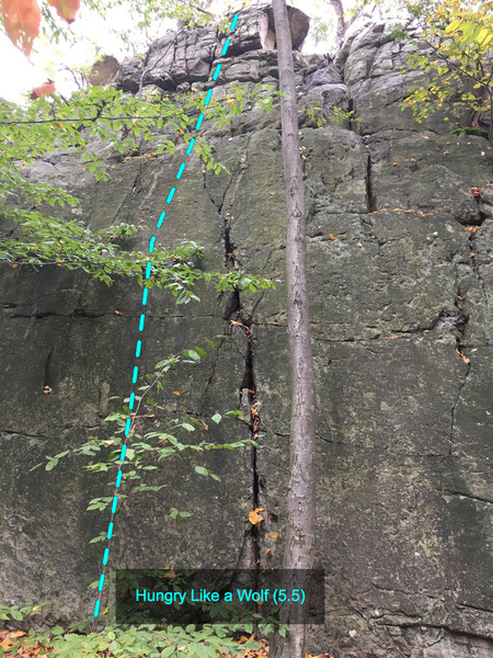 Hungry Like a Wolf (5.5) at The Main Wall<br> Wolf Rock, Catoctin Mountain Park