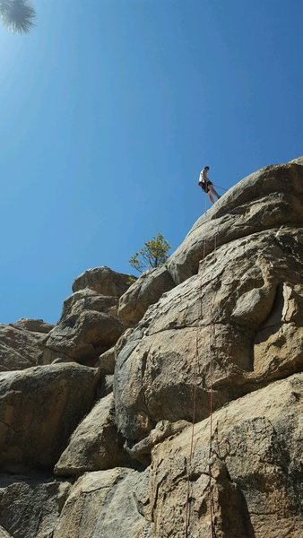 Rock Climbing Photo: Fun climb at the Holcomb pinnacles
