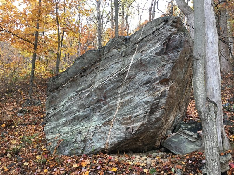 Scars of white quartz streak this boulder on the Gateway Trail