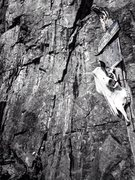 Rock Climbing Photo: Black and white a 3 pitch at Weir, quebec. Ain&#39...