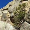 Fun climbing.