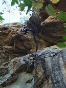 Rock Climbing Photo: Virginia resting after pulling the crux move on th...
