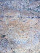 Rock Climbing Photo: Attractive rock that is even prettier in person.