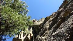 Rock Climbing Photo: Shad, making it look easy.