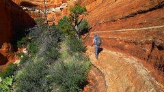 Rock Climbing Photo: Traversing above thick brush.