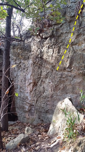 Rock Climbing Photo: Tech Tonic Flow and Creature Corral next to the ca...
