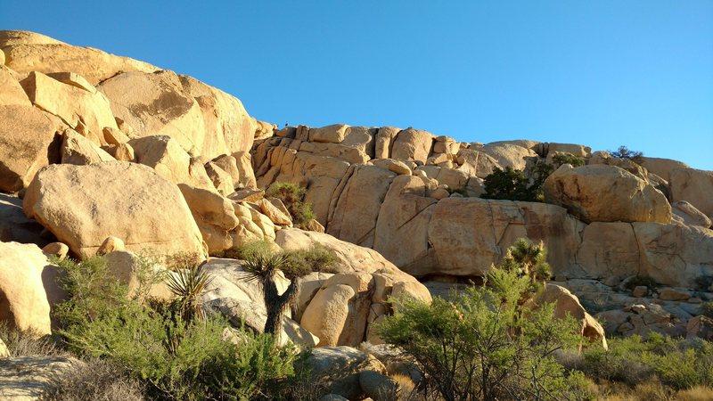 Rock Climbing Photo: From further away. Rams on the ridge.