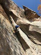 Rock Climbing Photo: Great crack climbing on Sandburger, Sand Rock, AL.