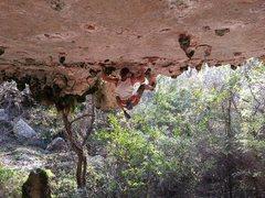 Rock Climbing Photo: Photo by Du Lo.