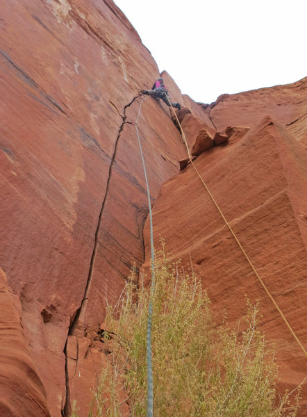 Rock Climbing Photo: Emily past the hardest part on P2.