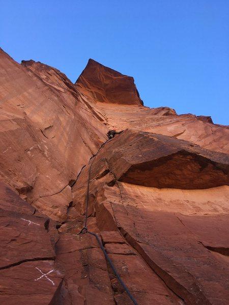 Rock Climbing Photo: cruising up in Zion