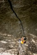 Rock Climbing Photo: The Cobra Crack photo by Dan Krauss