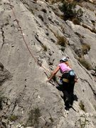 Rock Climbing Photo: Past the bushies near the bottom on Hobotnica