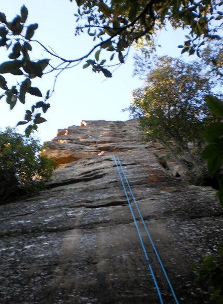 Rock Climbing Photo: This Sporting Life