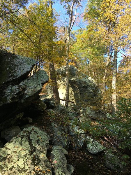 The Sudden Boulder at Catoctin Mountain Park looms suddenly from around a bend in the trail.