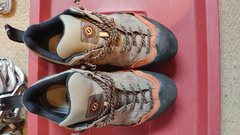 Rock Climbing Photo: Scarpa approach shoes