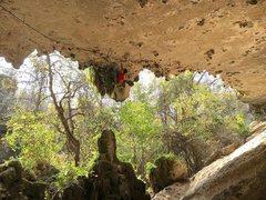 Rock Climbing Photo: Du Lo on Roman Orgy