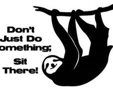 Rock Climbing Photo: sloth