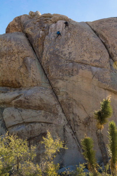 A couple of free soloers on 11/29/2016