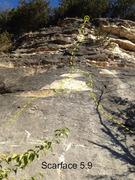 Rock Climbing Photo: Scarface Direct