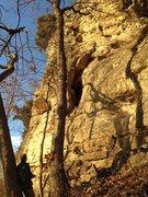 Rock Climbing Photo: Jim Karpowitz, on Turtle Head 5.9, climbing with M...