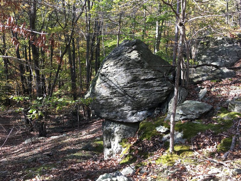 The distinct diamond-shaped face of the Jabba the Hutt boulder at the Cunningham Falls area in Catoctin Mountain Park