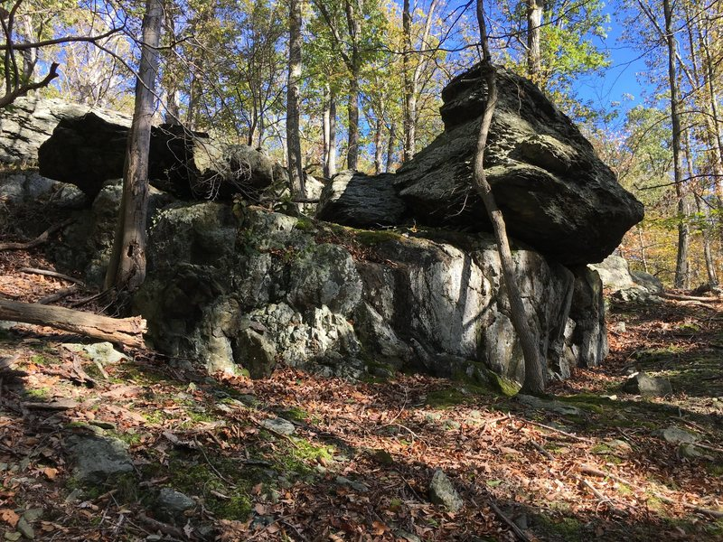 The distinctly brooding backside of Jabba the Hutt<br> Catoctin Mountain Park, Maryland