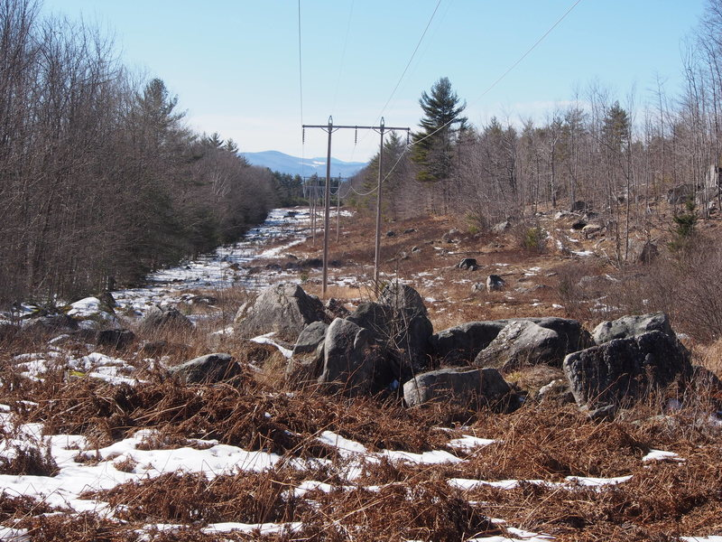 Looking back towards the parking on Knights Hill Rd. The Cliff should be visible on the left when you get to these rocks on the Powerline cut