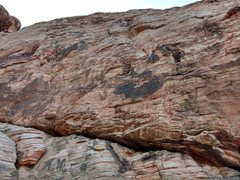 Rock Climbing Photo: Face with the routes