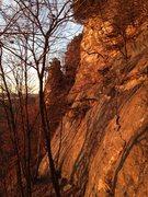 Rock Climbing Photo: Fowl Slab