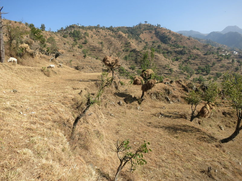 Rock Climbing Photo: Khanda to the SE.
