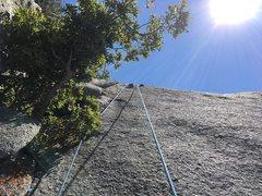 Rock Climbing Photo: The last section of Hatchet Crack.  This climb has...