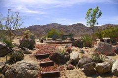 Rock Climbing Photo: Cabin Views