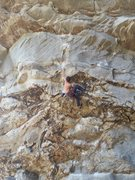 Rock Climbing Photo: Apollo Reed - 5.13a