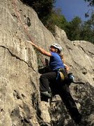 Rock Climbing Photo: Jen climbing out of the trees on Mimi