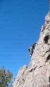Rock Climbing Photo: Prickly Proctologist