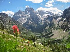 Rock Climbing Photo: The Grand towering above upper Cascade Canyon. Jul...