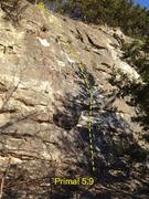 Rock Climbing Photo: Primal (sport line)