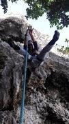 Rock Climbing Photo: Opossum