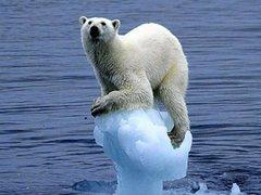 Rock Climbing Photo: Idaho Ice be like..