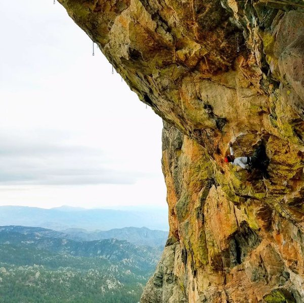 Rock Climbing Photo: Ape Debate , Orifice wall. Tucson,AZ.