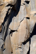 Rock Climbing Photo: Awesome climbing up in the Taft Granite on El Cap.