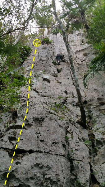 Comiquita is the bolted route to the left of this climber.