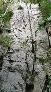 Rock Climbing Photo: Picture of the Muralla Pitú wall.